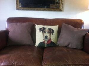 jack russel cushion