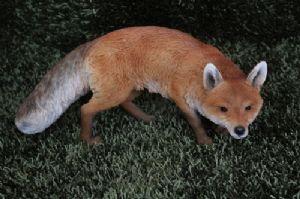 life size prowling fox