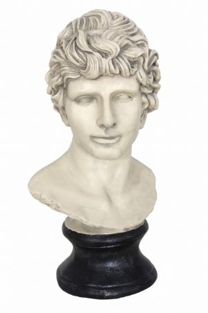 antique-white-michaelangelo-s-david-style-bust-figure-head-free-postage-796-p[ekm]300x452[ekm]